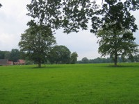 twents landschap